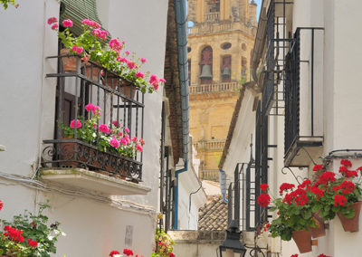 spain-culture-patio-cordobes