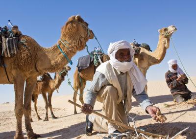 morocco-culture-camellos