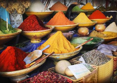 morocco-culture-especies
